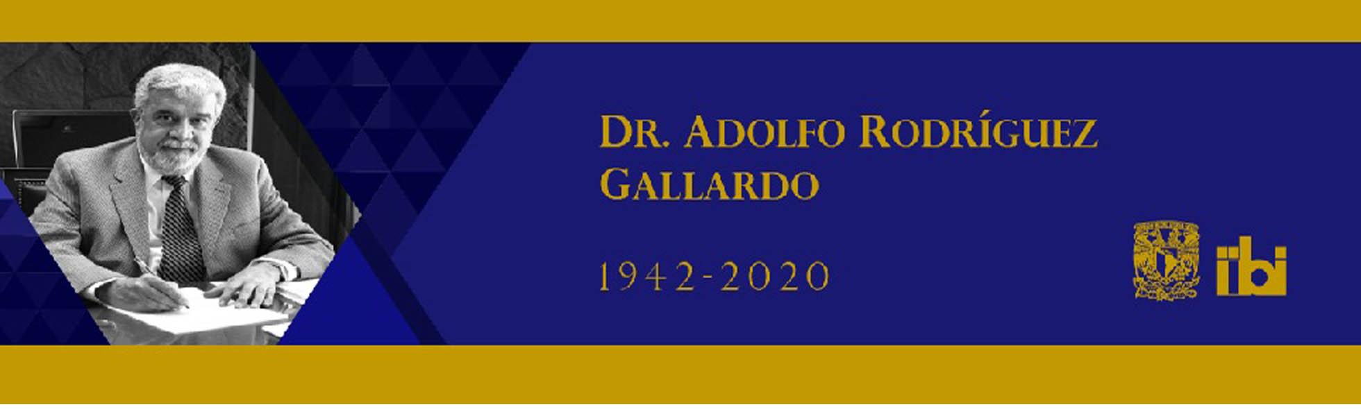 Adolfo Rodríguez Gallardo